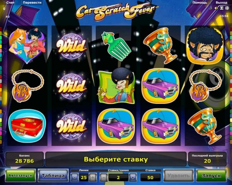 Cat scratch fever novomatic slot game quest rtp